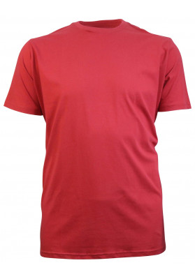 WORN RED BASIC PLAIN TEE