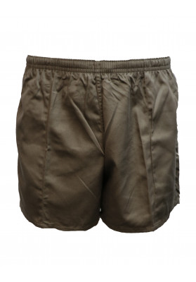 WORN TAUPE RUGBY SHORTS
